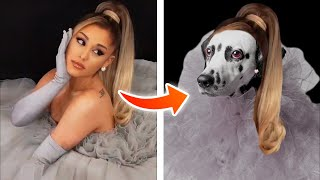 10 HALLOWEEN COSTUME IDEAS FOR YOUR DOG  ( Celebrity Edition to help get dogs adopted! )