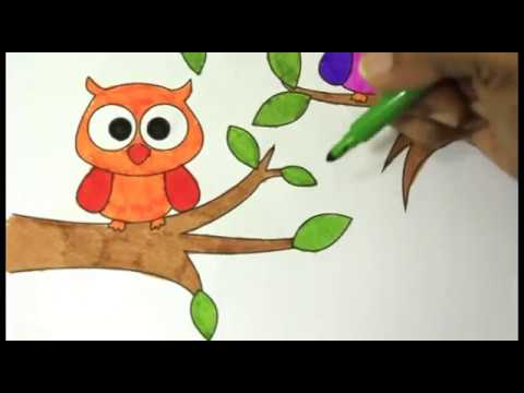 Colouring Owl On The Tree Fun Coloring Pages For Kids Owl Coloring