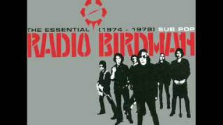 Watch Radio Birdman Love Kills video