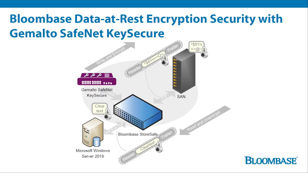 Bloombase StoreSafe Data-at-Rest Encryption Security for SAN with Thales  Gemalto SafeNet KeySecure