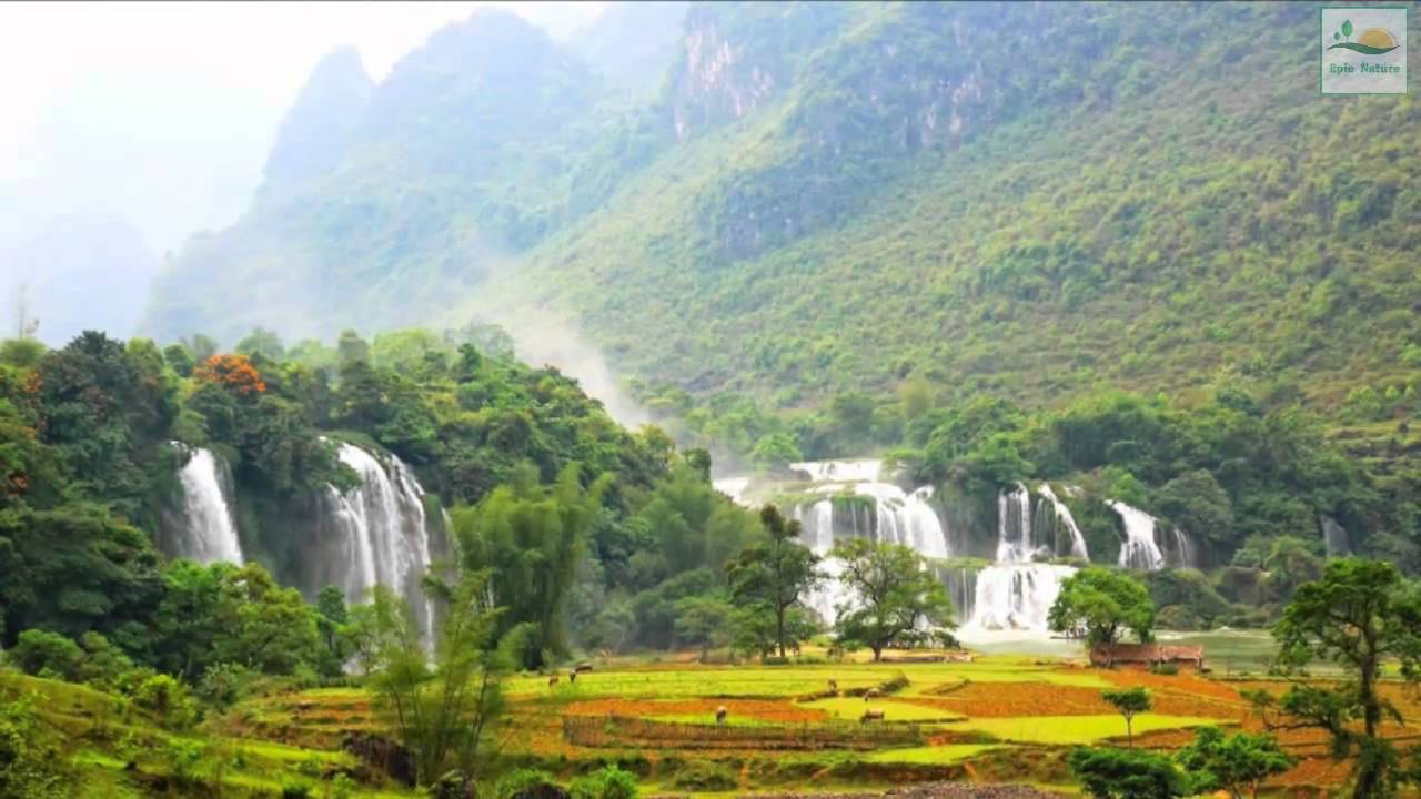 Epic Nature - Relaxing music from Vietnam - YouTube Relaxing Music Youtube