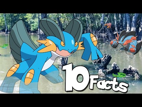 10 Facts You Probably Didn't Know About Swampert! (Pokemon Facts) | The Week Of 10's #4