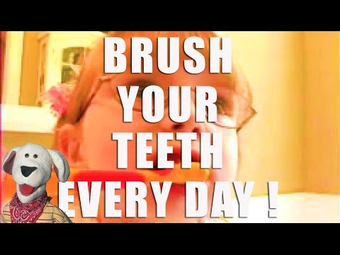 Teeth Brushing | Brush Your Teeth from Lots To Learn Preschool DVDs