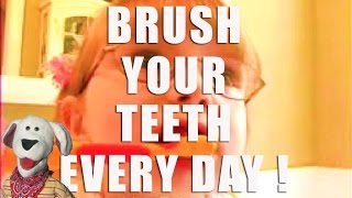 Teeth Brushing   Brush Your Teeth from Lots To Learn Preschool DVDs thumbnail