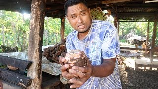 🇼🇸 SAMOA VLOGS 8: ANOTHER DAY IN PARADISE 🌺 🏝