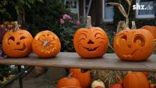 Halloween-Kürbis selber schnitzen: So geht