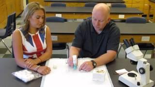 Drosophila Lab Demo