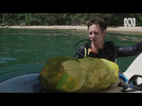 War On Waste: Sydney Harbour Dive