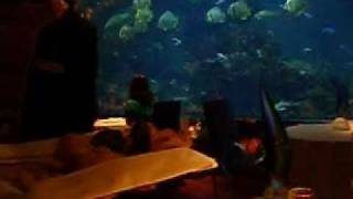Burj al Arab (restaurante).wmv