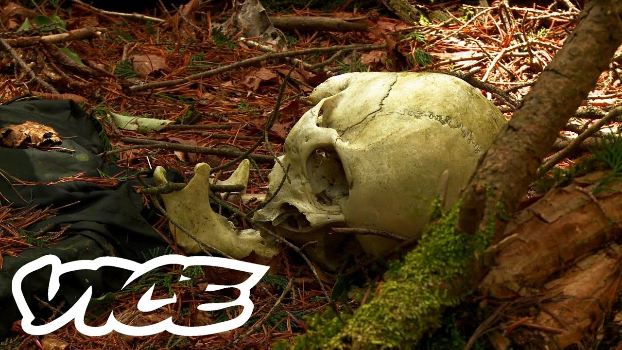 Japan's Forest of Suicides - Aokigahara