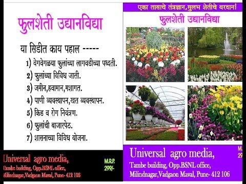फुलशेती - flower nursery - fulsheti