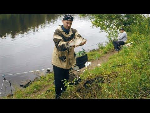 ловля леща фидером на канале