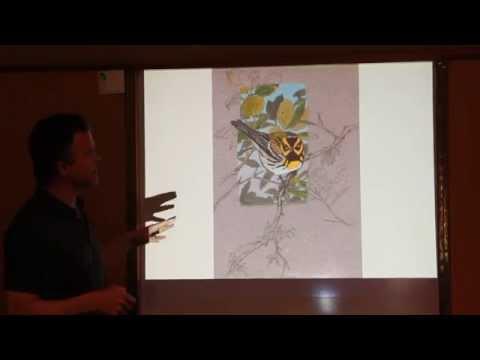 Using Gouache by John Muir Laws