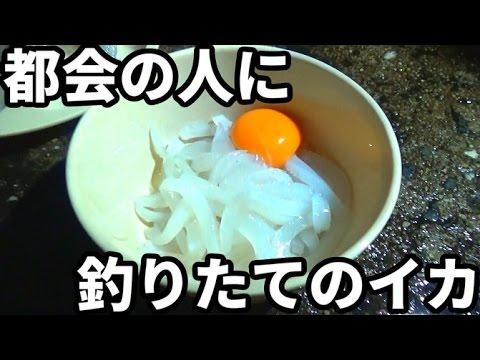 UUUMの社長に九州の釣りたてのアオリイカを食べてもらった!#1