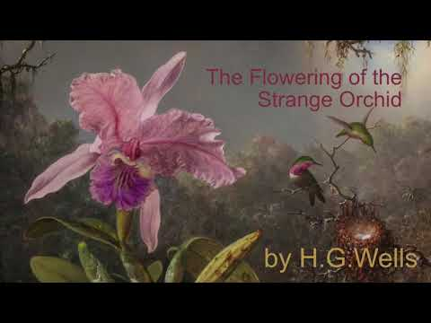 The Flowering of the Strange Orchid by H G Wells (1905)