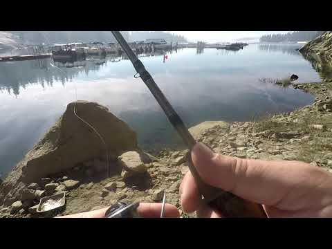 Fishing Shaver Lake Boat Launch Area