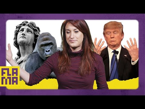 What To Do Now That Trump Is President - Joanna Rants