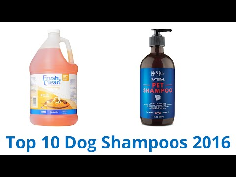 10 Best Dog Shampoos 2016