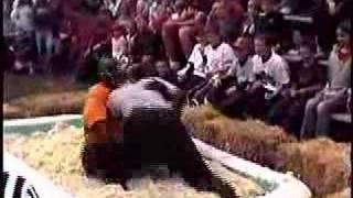 Sauerkraut Wrestling