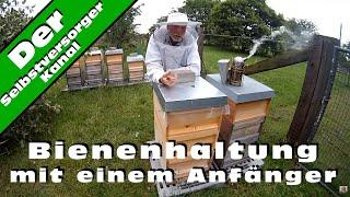 Bienenhaltung mit einem Anfänger