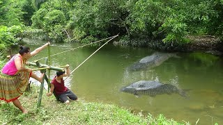 Survival skills: Build primitive fish trap by bamboo catch carp - Cooking fish and Eating delicious