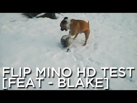 2010-01-08 'Flip Mino HD Test [feat - Blake]'