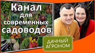Дачный агроном - канал о саде и огороде для дачников