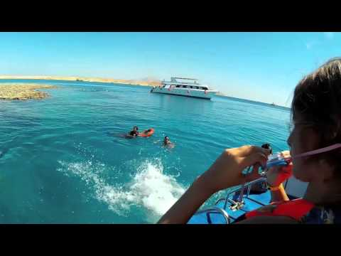 Tiran Island Snorkeling Trip By Boat From Sharm - 10 Sept. 2014