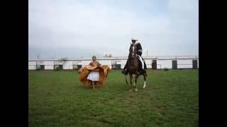 Маринера. Национальный танец Перу. Лошадь и девушка.