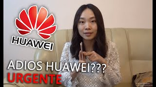 HUAWEI SE QUEDA SIN ANDROID??? - USA vs CHINA ⭐ Eva Chinita