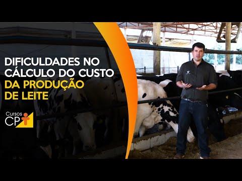 Maiores dificuldades no cálculo do custo da produção de leite e alternativas de resolução