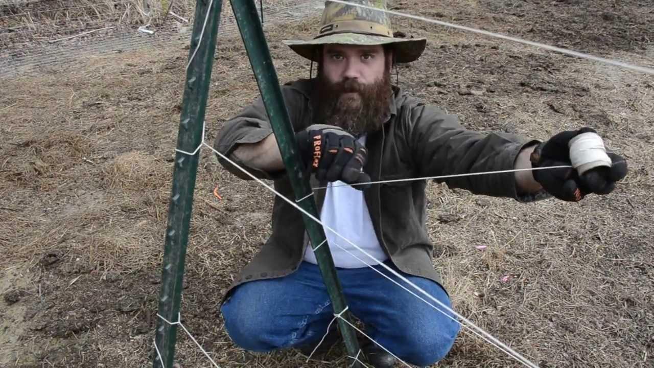 How To Build An A Frame Trellis Youtube