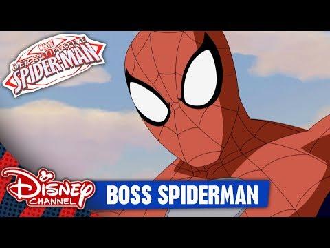 DER ULTIMATIVE SPIDER-MAN - Clip: Boss Spiderman   Disney Channel