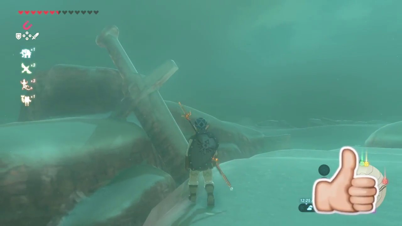 The Forgotten Sword Eighth Heroine Sword Location Zelda Botw Youtube To start this side quest, talk to bozai while wearing the gerudo disguise. the forgotten sword eighth heroine sword location zelda botw