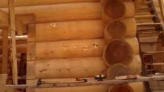 Антисептик, реальный опыт Remmers(Германия)Tikkurila(Финляндия) Деревянные дома срубы кедр. часть12(наш сайт ---------dom-srub.jimdo.com скайп жены------mousekevich эл. почта russ2@inbox.ru., 2013-07-23T16:07:11.000Z)