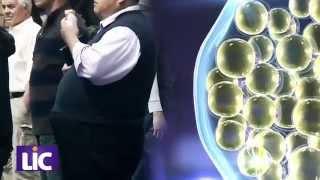 Mỡ trắng - Quá trình tích tụ mỡ trắng gây thừa cân