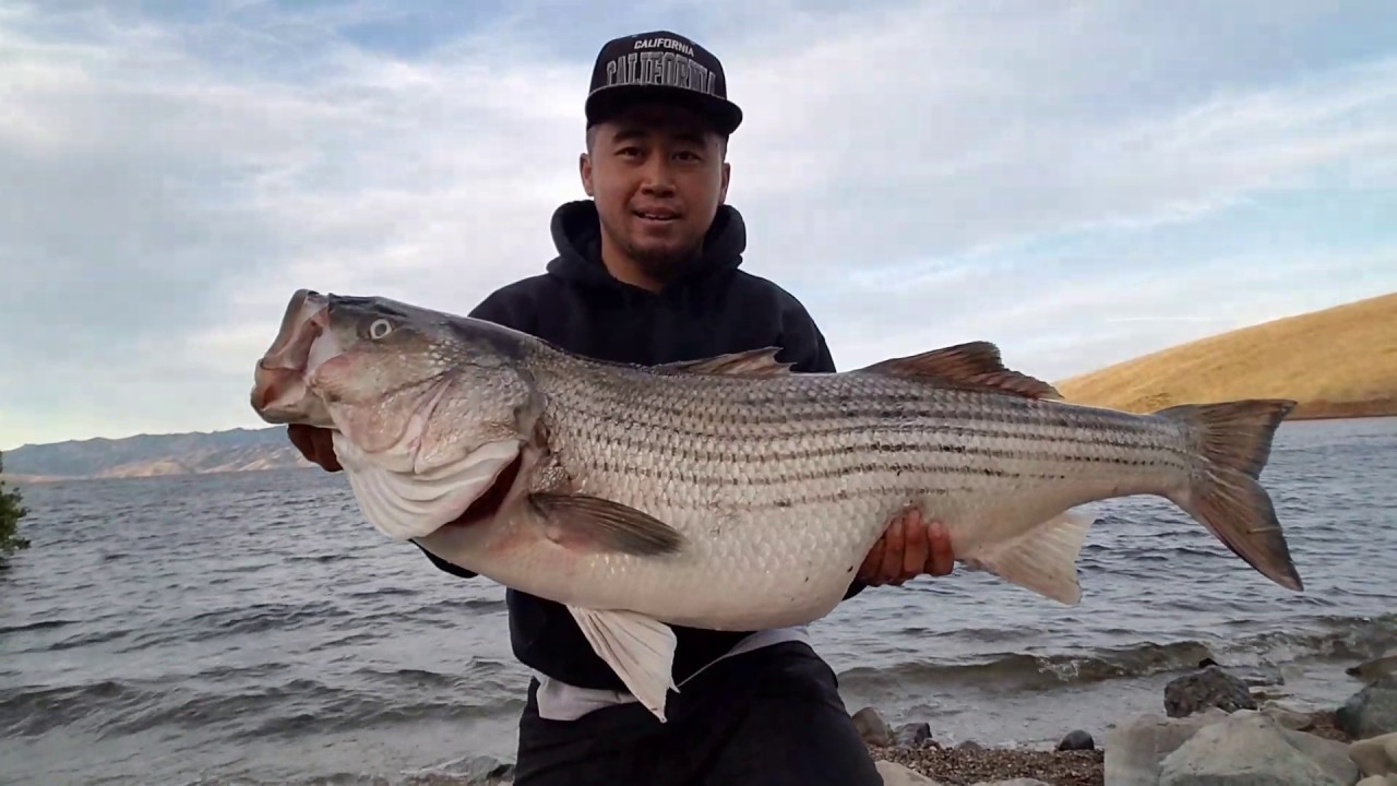 Big striper at san luis reservoir 5 5 17 youtube for San luis reservoir fishing report 2017