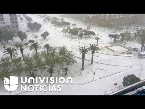Video: Una fuerte nevada azota el norte de México