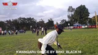 Kwangwaru ya albino mweusi ilivyokuwa ya kipekee