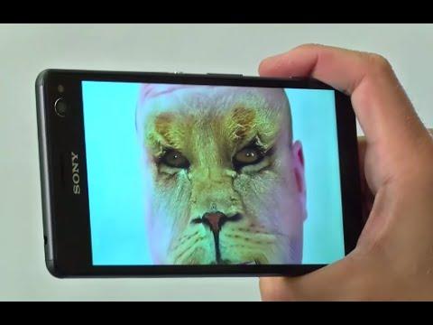 Sony Xperia C4. Подрыв шаблона.
