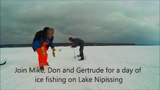 Ice Fishing for Perch on Lake Nipissing Feb 2018