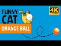 VIDEOS FOR CATS - ORANGE BALL / CAT GAMES
