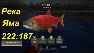 Река Яма. Точка 222187. Есть ли рыба Русская рыбалка 4