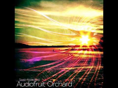 Static Noise Bird - Pocketsize Milkyway [Audiofruit Orchard]