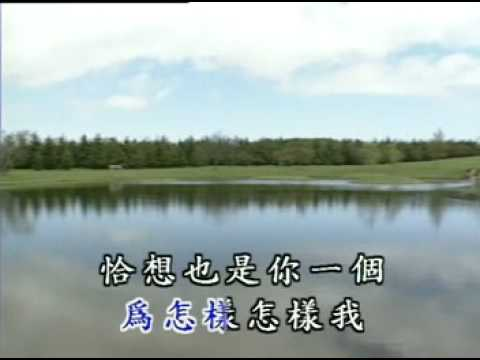 洪榮宏-恰想也是你一人.mpg
