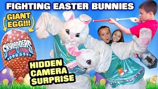 Fighting Easter Bunnies Caught! Hidden Camera Battle! Giant Kids Surprise Egg (skylanders Trap Team)