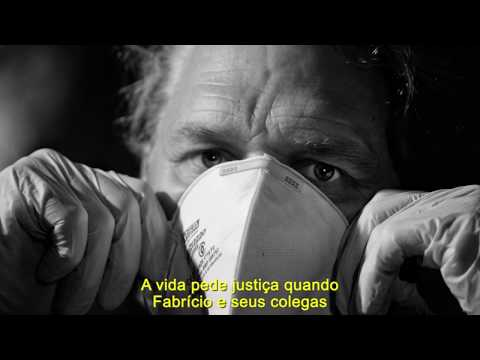Campanha de valorização do Serviço Público: A Vida pede Justiça
