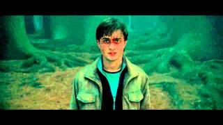 Отрывок из фильма «Гарри Поттер и Дары смерти: Часть 2»
