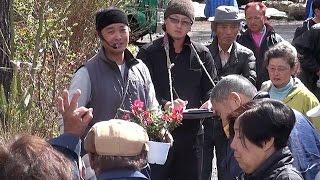 約1千本が出品された植木の初競り 山梨・富士河口湖町