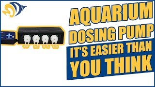 Setting Up an Aquarium Dosing Pump: It's Easier Than You Think!